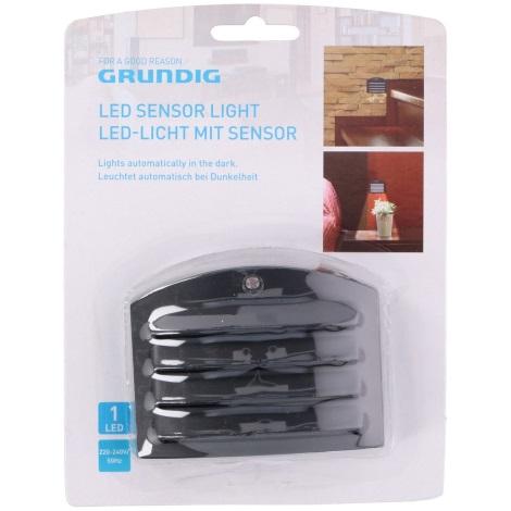 Grundig - LED Orientačné svietidlo do zásuvky so senzorom 1xLED/230V