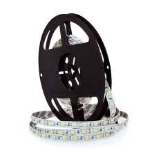 LED Pásik 5m 45W/12V IP20 3000K