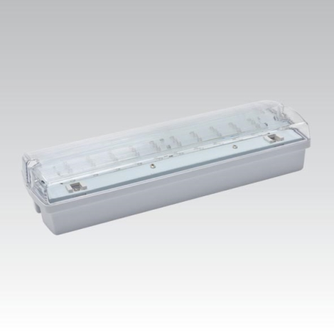 Núdzové svietidlo CARLA LED LED/5,51W/230V dočasné 1h