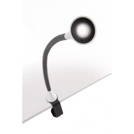 Philips-Massive 66707/31/16 - Stolná lampa DESKLIGHT WHITE LED/2,5W/230V